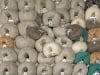 Mixed Lot Kid Mohair Yarns