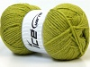 Favorite Light Green Worsted