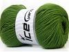 Wool DeLuxe Green