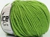 Superwash Wool Bulky Green