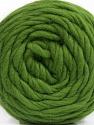 Fasergehalt 100% Wolle, Brand Ice Yarns, Green, fnt2-55486