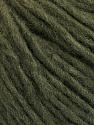 Conţinut de fibre 50% Lână, 50% Acrilic, Brand ICE, Dark Green, fnt2-57005